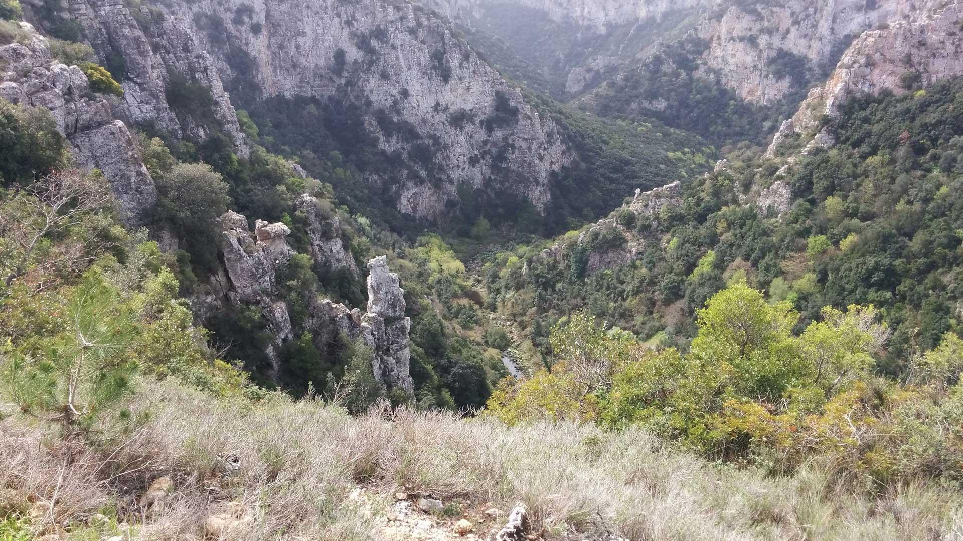Torre-dell-orso